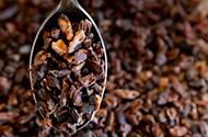 Madagascan Cacao Nibs