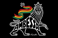 THE AMBESSA T-Shirts